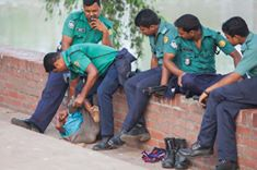 bangladesh- (278)