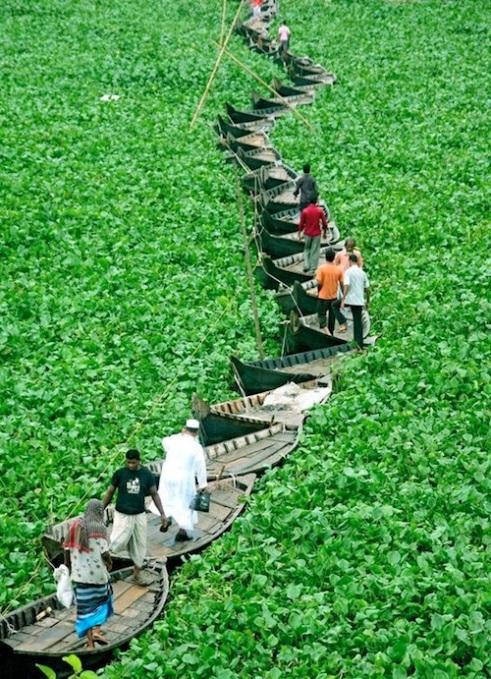 Bangladesh-farmers