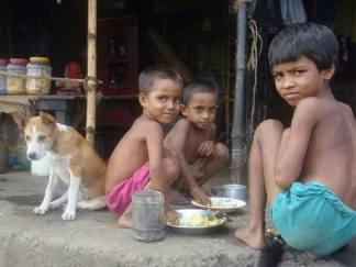 bangladesh- (241)