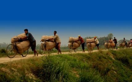 bangladesh- (290)