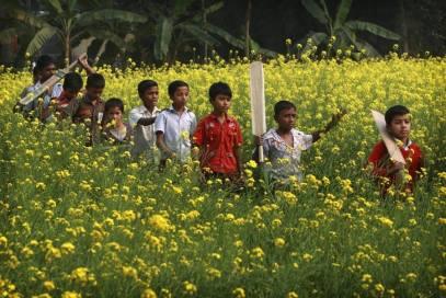 bangladesh- (390)
