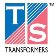 ts_logo1